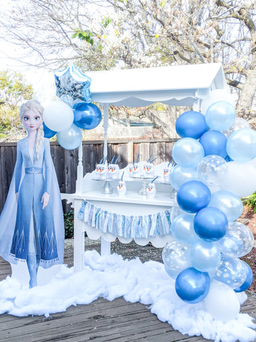 frozen party decorations for girl birthday parties