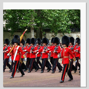 Royal Guards Parade, London Greeting Card