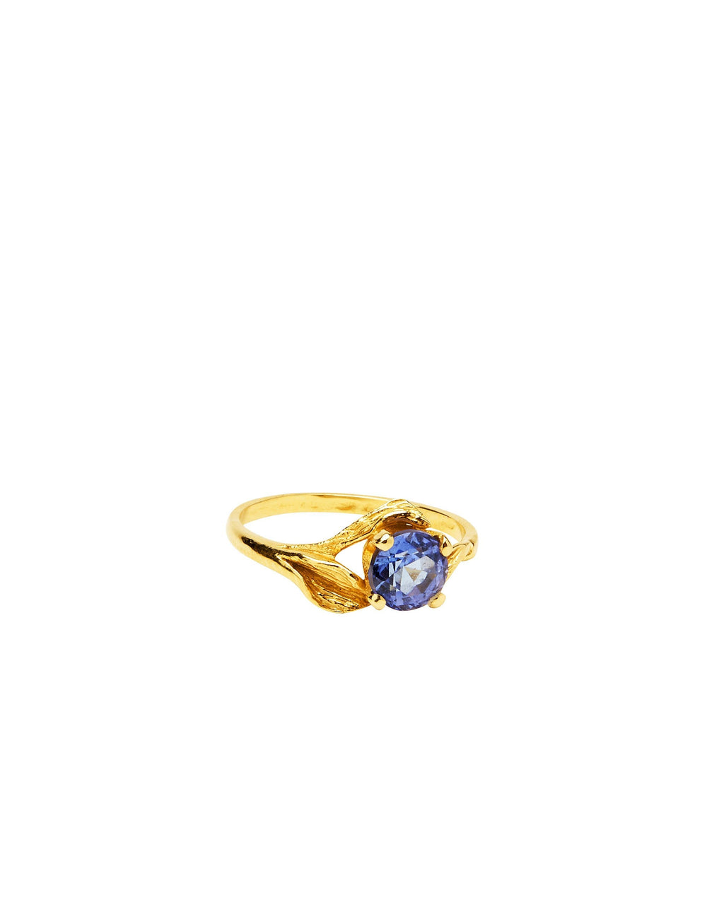 Tanzanite on 14k Gold