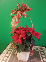 pointsettia hoop basket