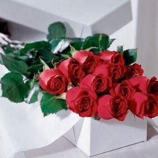 dozen boxed long stemmed roses