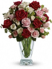 Valentine 3 dozen vased assorted colors