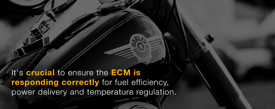 It's crucial to ensure the ECM is responding correctly.