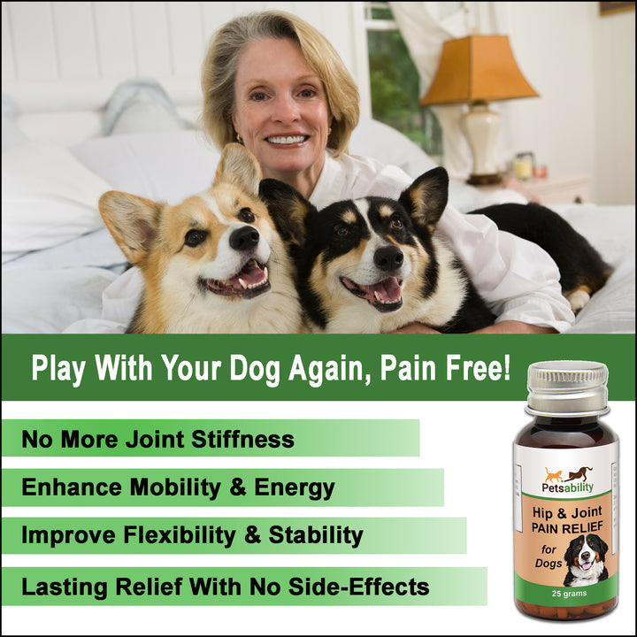 Dog Hip and Joint Pain Relief - All Natural Arthritis Support and Anti-Inflammatory Remedy