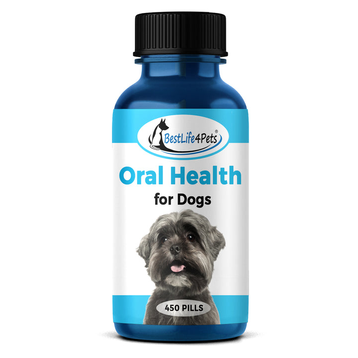 Oral Health All-Natural Dog Remedy - Highly Effective Dental Formula Treats Pet Gingivitis, Stomatitis, Gum and Teeth Problems  (450 pills)