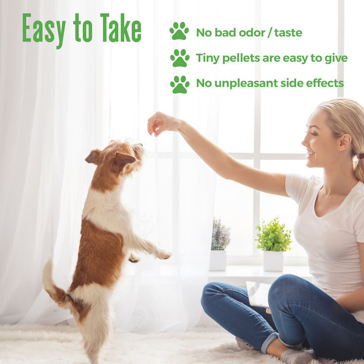 WALK-EASY Extra Strength Dog Joint Pain Relief