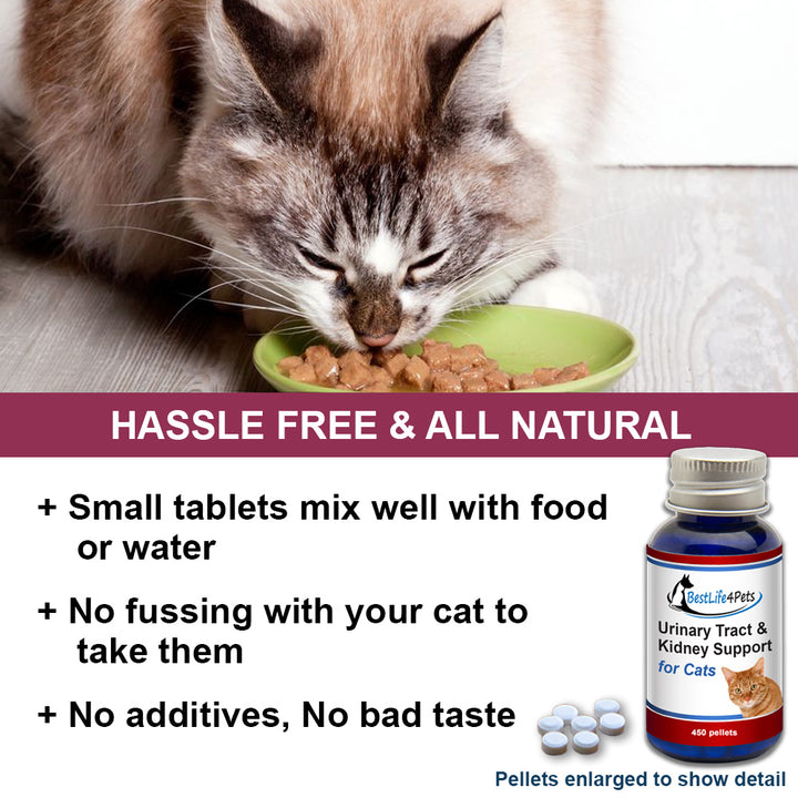 Kidney, Bladder and UTI Support for Cats