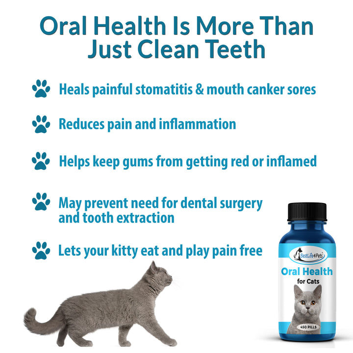 Oral Health All-Natural Cats Remedy - Treats Pet Gingivitis, Stomatitis, Gum and Teeth Problems  (450 pills)