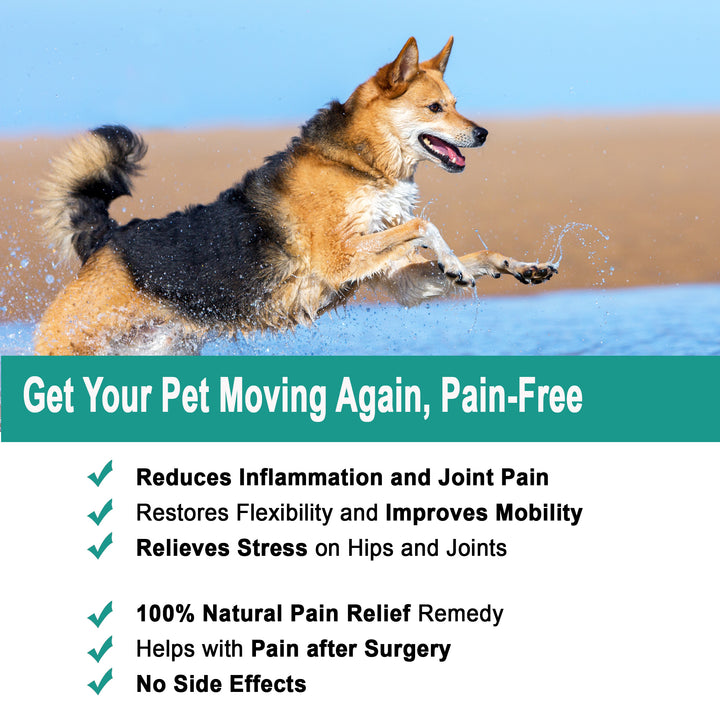 Joint Pain Relief with Glucosamine, Chondroitin & Turmeric