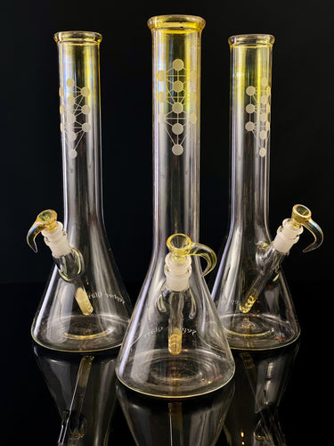 Sepher Glass Beaker