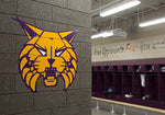 Wall Graphics; Bleacher Enclosures, Window Perforations