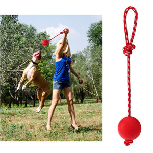 Rubber Ball with Rope - Furry Buddy