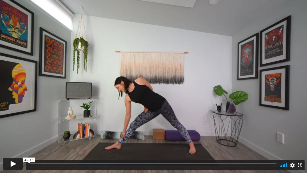 Nectar Slow Flow Yoga Home Practice with Gina Caputo