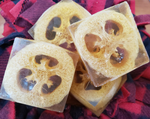 Loofahpalooza Honey Soap - Sisters Soap Kitchen