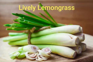 Lively Lemongrass! A set of 4 Lemongrass and Sage Goat Milk Soap and 1 tin, Mellow Yello Moisture. - Sisters Soap Kitchen