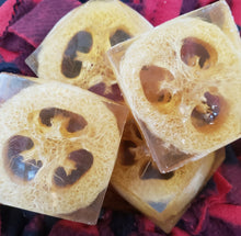 Load image into Gallery viewer, Loofahpalooza Set of 2 soaps...SALE...$10.00 - Sisters Soap Kitchen