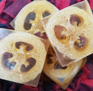 Loofahpalooza Set of 2 soaps...SALE...$10.00 - Sisters Soap Kitchen
