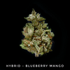 Blueberry Mango - Hybrid - by Old Pal