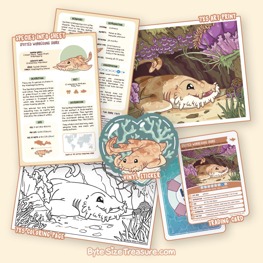 Wobbegong Shark \\ Shark Nerd Bundle