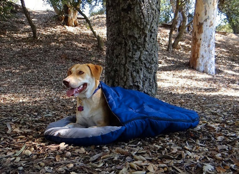 mybusydog-pet-supplies-dog-sleeping-bag