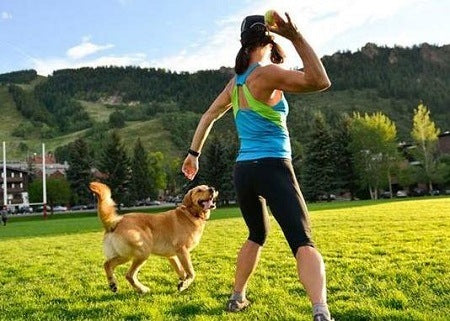 options-keep-dog-fit-healthy-mybusydog
