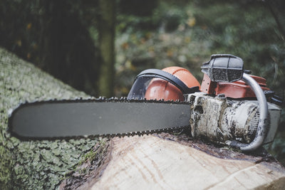 Why Loggers, Arborists & Tree Surgeons Need Chainsaw Gloves