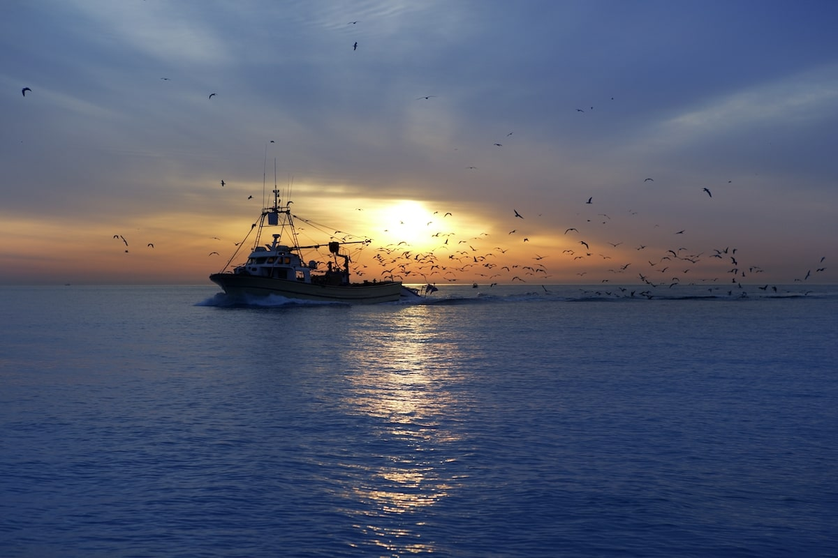 commercial fishing vessel at sunrise