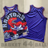 maillot-big face-toronto-raptors-retro-michell & ness-violet
