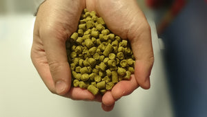 Bittering Hops by the Pound