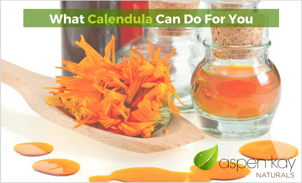What Calendula Can Do For You