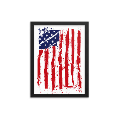 US Flag Framed poster