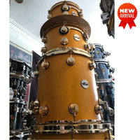 DW USA Collector's All-Maple 6-Pc Shell Pack, Satin Oil Amber, Gold HW