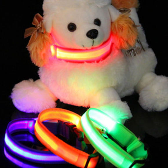 Pet Cat Dog Collar LED Night Light