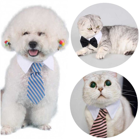 Cat Dog Bow Tie Collar Necktie