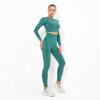Autumn Yoga set Women Gym Clothes Seamless Fitness Sportswear - Tokhore