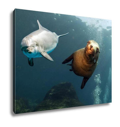 Gallery Wrapped Canvas, Dolphin And Sea Lion Underwater Close Up - Tokhore