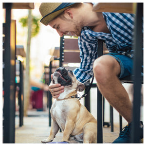 5 Dog Friendly LA Restaurants