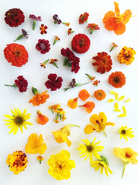 "Seasonal Mixed Edible Flowers: ""The Sunburst"" (September 2018)"