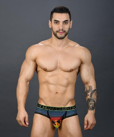 Andrew Christian California Sunset Mesh Brief Mens Underwear 男士 三角 底褲