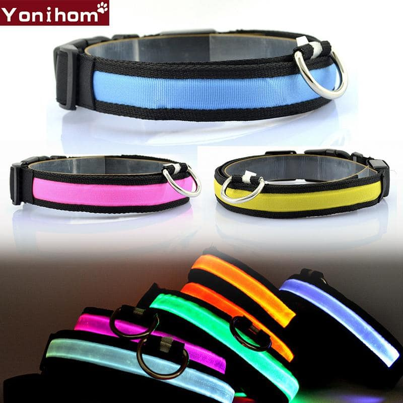 LED Dog Collars that are Luminous and light the Night for Safety with Flashing Glowing Color - More Natural Healing