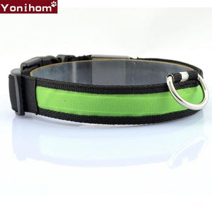 LED Dog Collars that are Luminous and light the Night for Safety with Flashing Glowing Color - More Natural Healing - Balanced Life from Nature