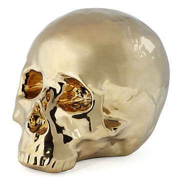 What Do Skulls Represent In Culture And Art Around The World