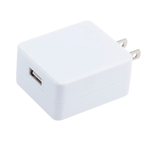 PTM AC Wall Adaptor