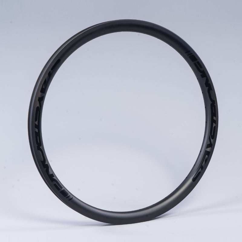 "RACE DVSN CRUISER CARBON / 24 X 1.75"" / RIMS / FRONT"