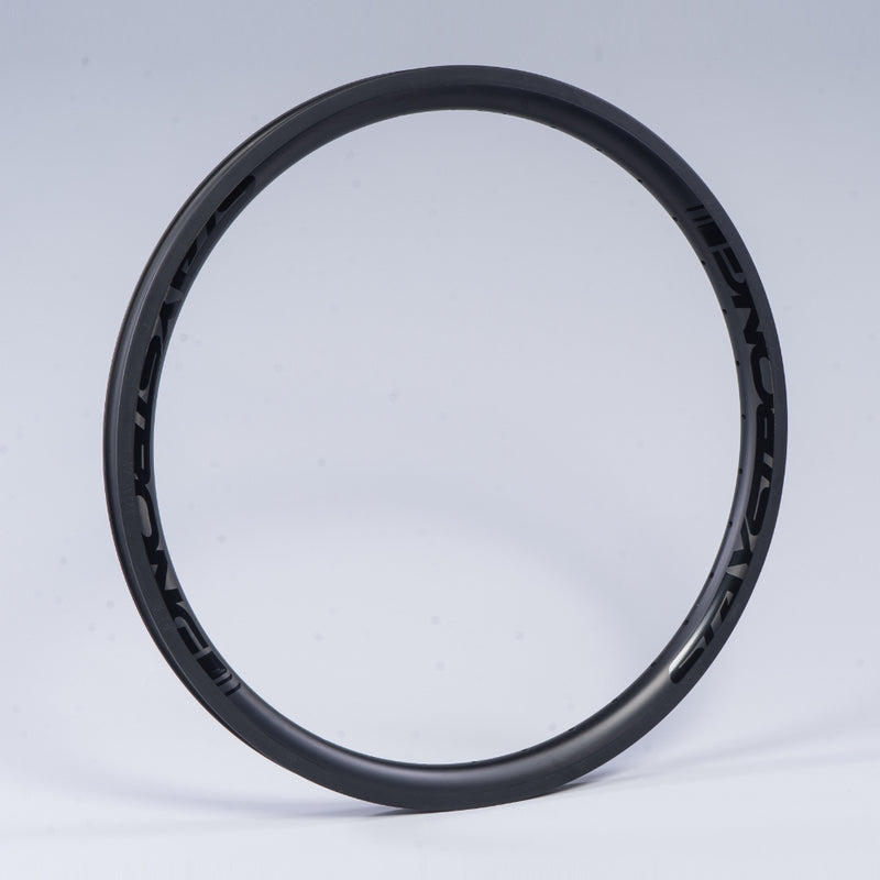"RACE DVSN CRUISER CARBON / 24 X 1.75"" / RIMS / REAR"