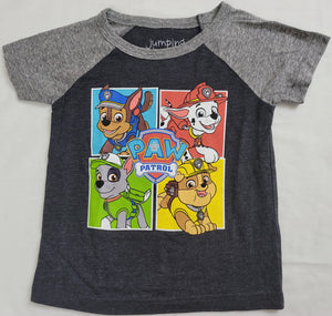 Team Paw Patrol Boys T-Shirt (Grey)