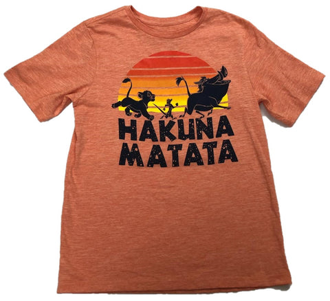 Simba Timon Pumba Hakuna Matata Walt Disney Lion King Boys T-Shirt
