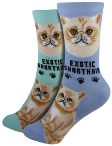 Exotic Shorthair Foozys Feline Cat Crew Socks