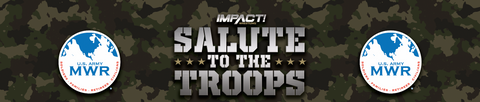 Salute the Troops Event Used Ring Skirt