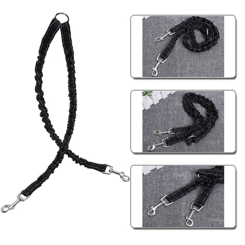 Double Lead Nylon Dog Leash. 3 colors.
